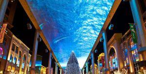 Skyscreen de más de 3.000 m2 en el techo de un centro comercial en China